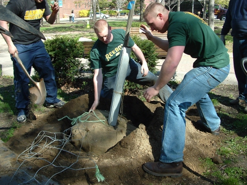 Perry Square Planting, Gannon University Students